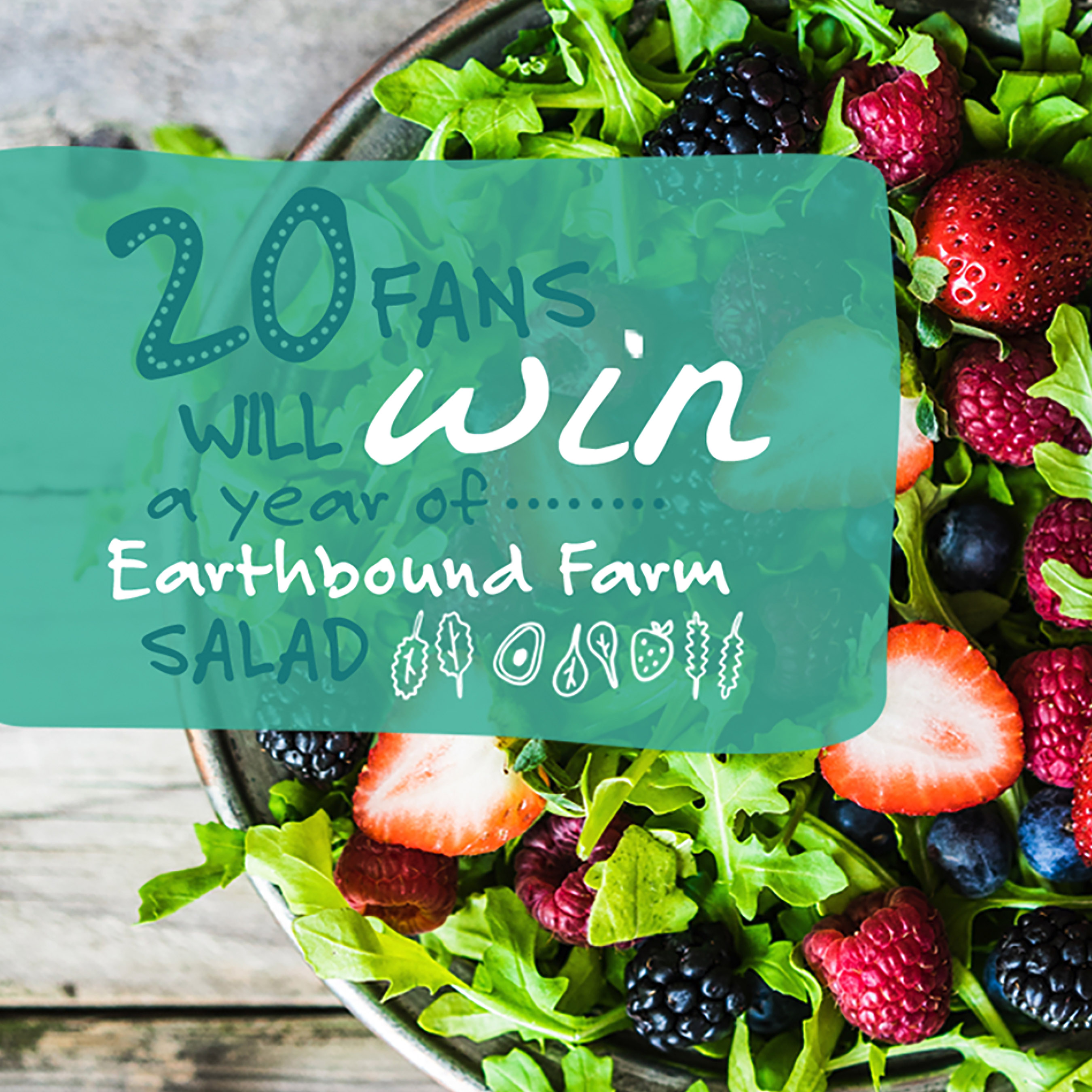 Kick off your week with #SaladSunday for a chance to win a year supply of Earthbound Farm Products!