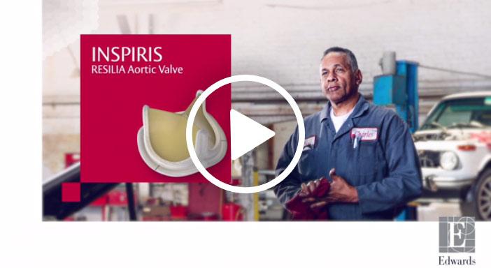 INSPIRIS valve animation
