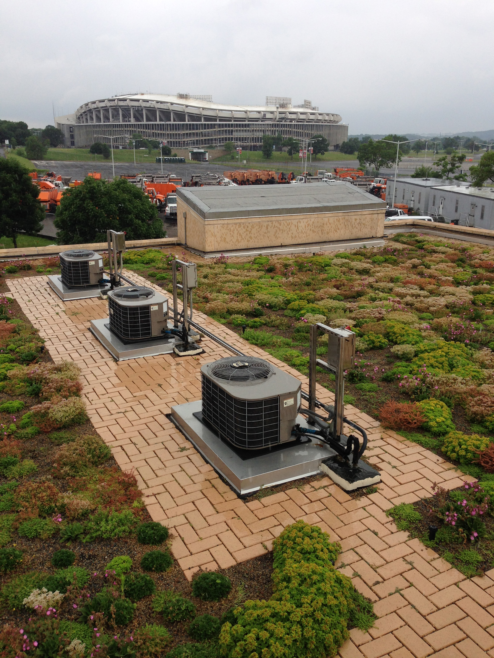 This green roof absorbs rain water before it can enter the sewer system, near RFK Stadium in Washington, DC.