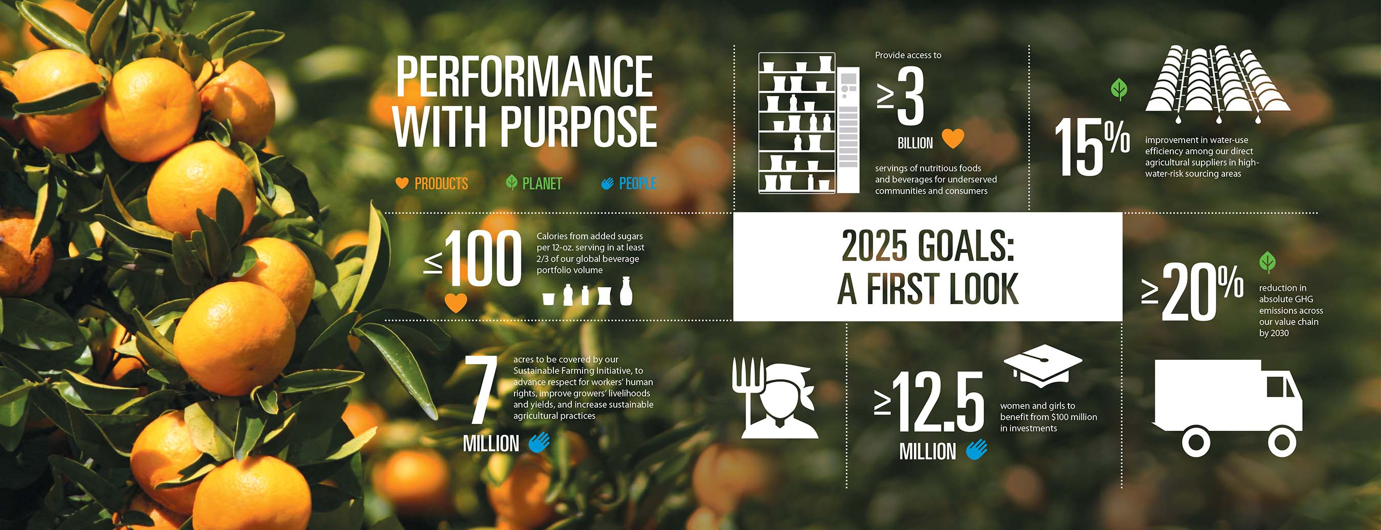 PepsiCo Performance with Purpose Infographic