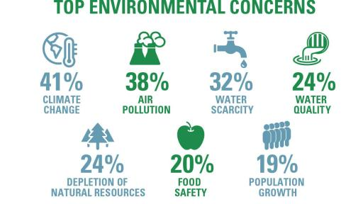 Top Environmental Concerns Infographic