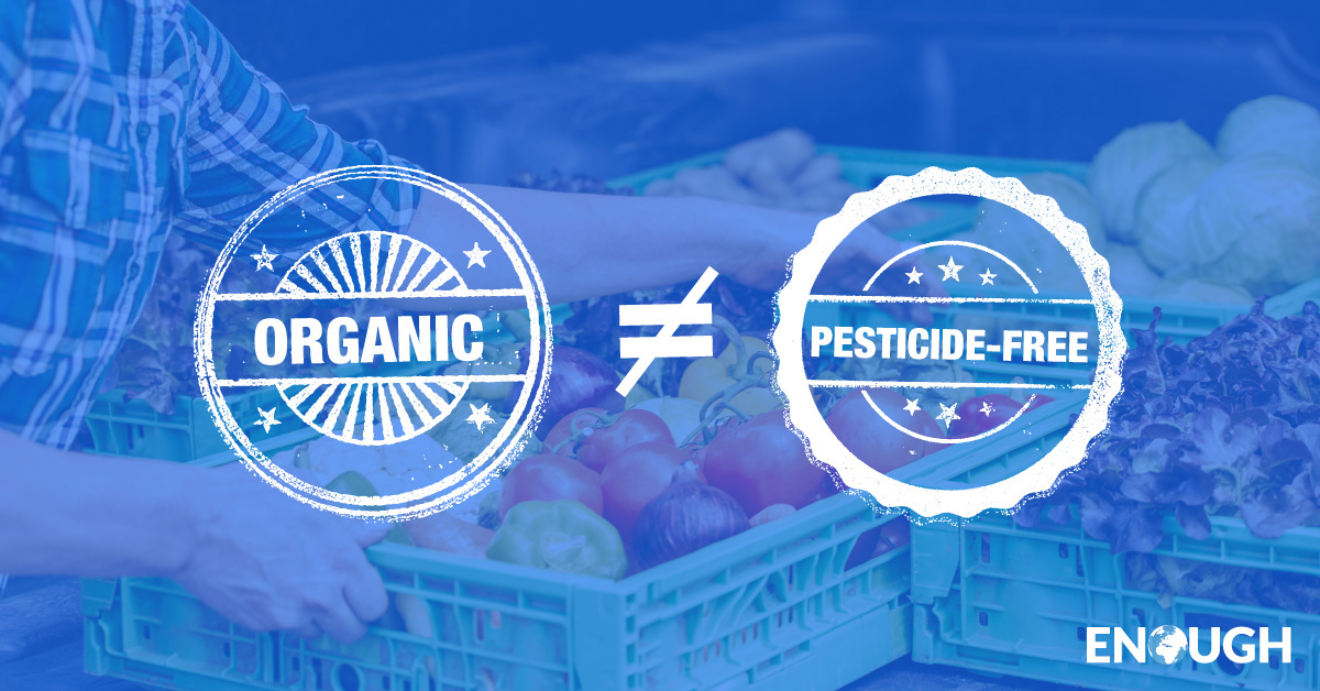 "Many believe organic is pesticide-free (82 percent), safer (75 percent), and more nutritious (66 percent) than conventionally produced food. However, the label ""organic"" doesn't mean any of those things! Organic farmers use a variety of pesticides made from natural sources similar to the synthetic version used in modern farming. What's more, a landmark analysis from Stanford compiled 237 studies concluding there was no safety, health, or nutrition difference between conventional and organically produced food."