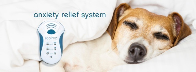 Here's how the Calmz® Anxiety Relief System works