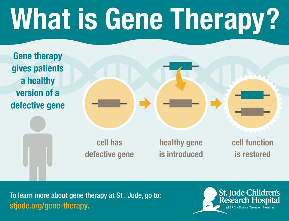 An overview of how gene therapy is performed at St. Jude