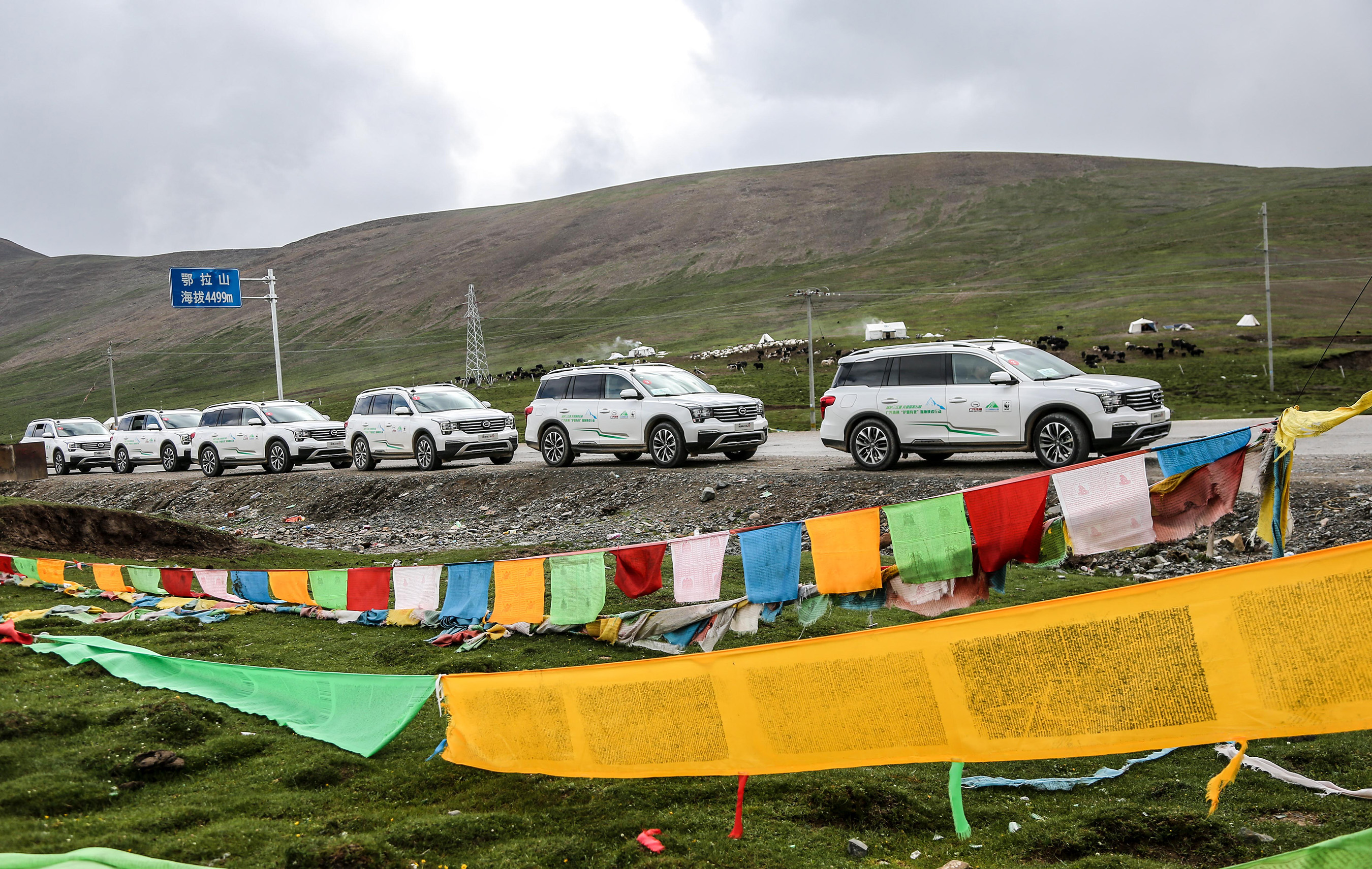 The robust and reliable GS8 vehicles were serving the staff in SNNR to protect the eco-environment