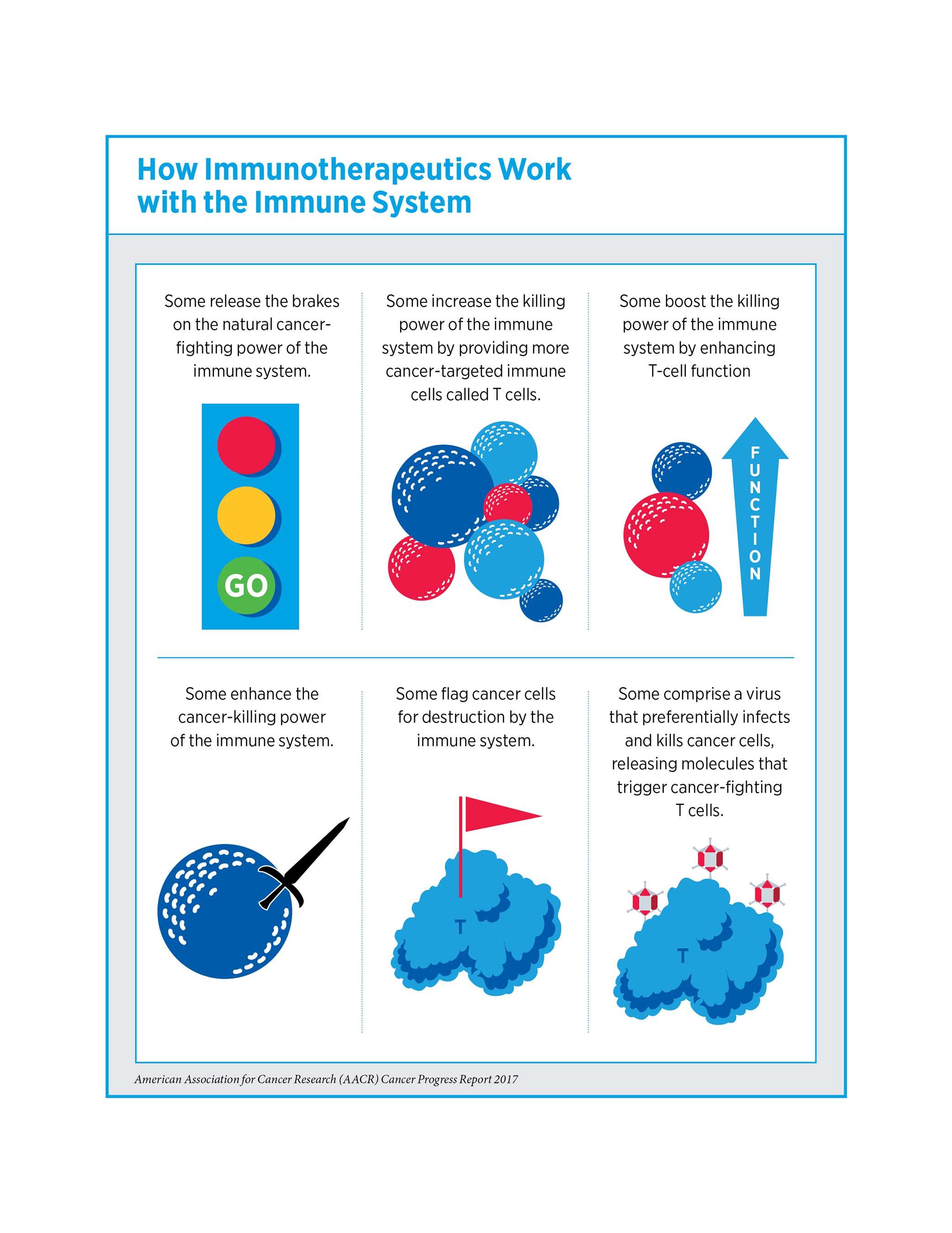 How Immunotherapeutics Work