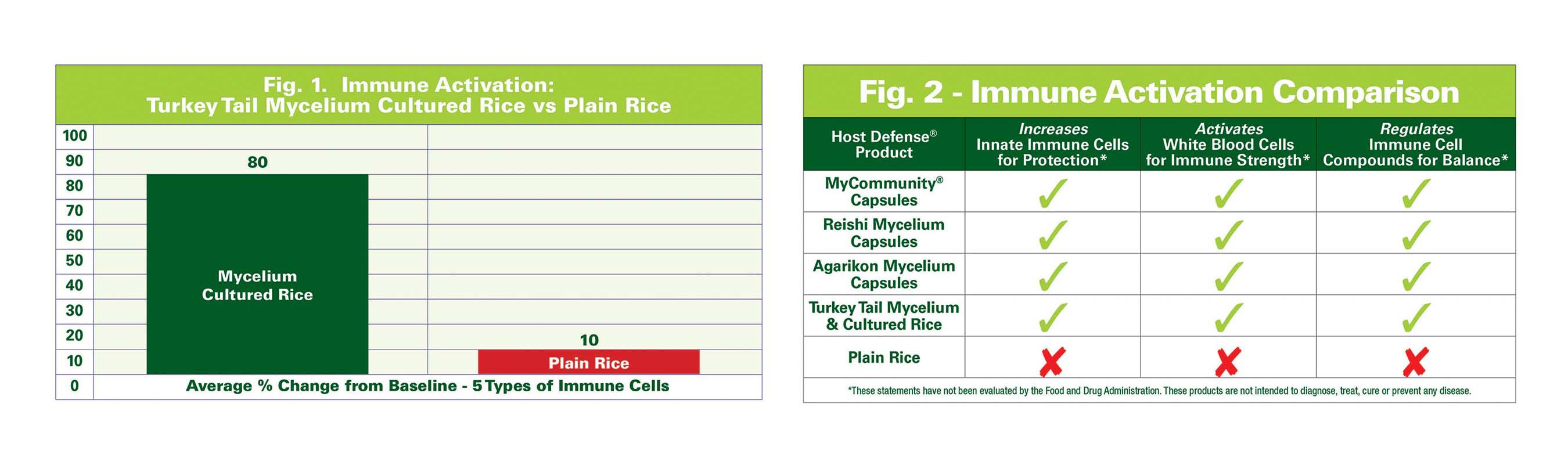 Immune Benefits of Mushroom Mycelium & Cultured Substrate