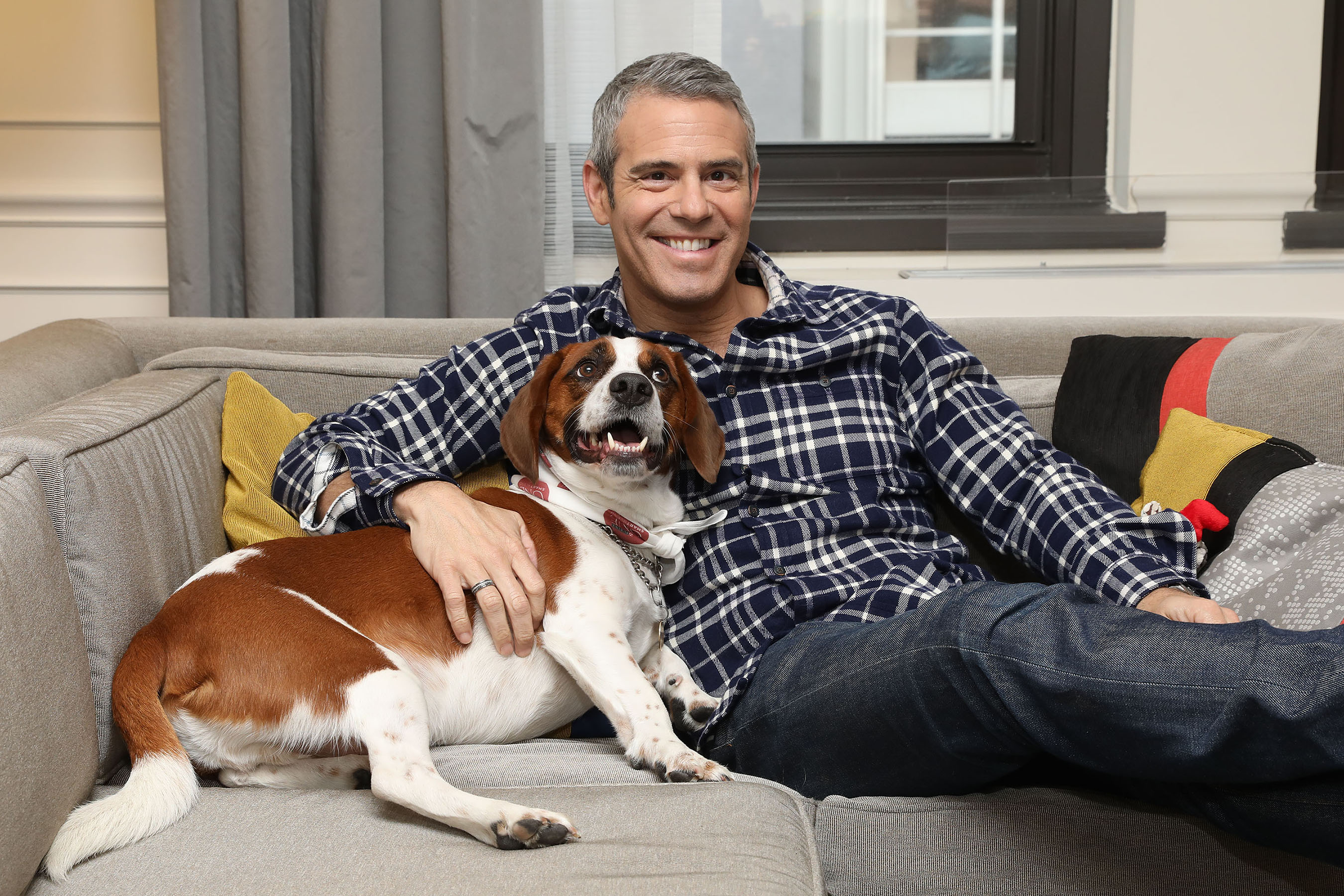 """Wacha is the best because he gives me cuddles and falls asleep on my leg,"" said Andy Cohen, Emmy Award-winning host and executive producer of ""Watch What Happens Live with Andy Cohen"""