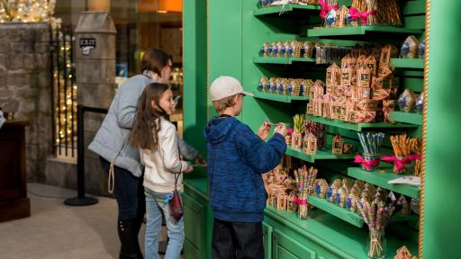 Visitors looking at Chocolate Frogs and Bertie Bott's Every Flavour Beans.