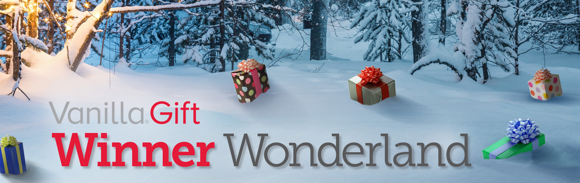 Vanilla® Launches Vanilla Gift Winner Wonderland Sweepstakes