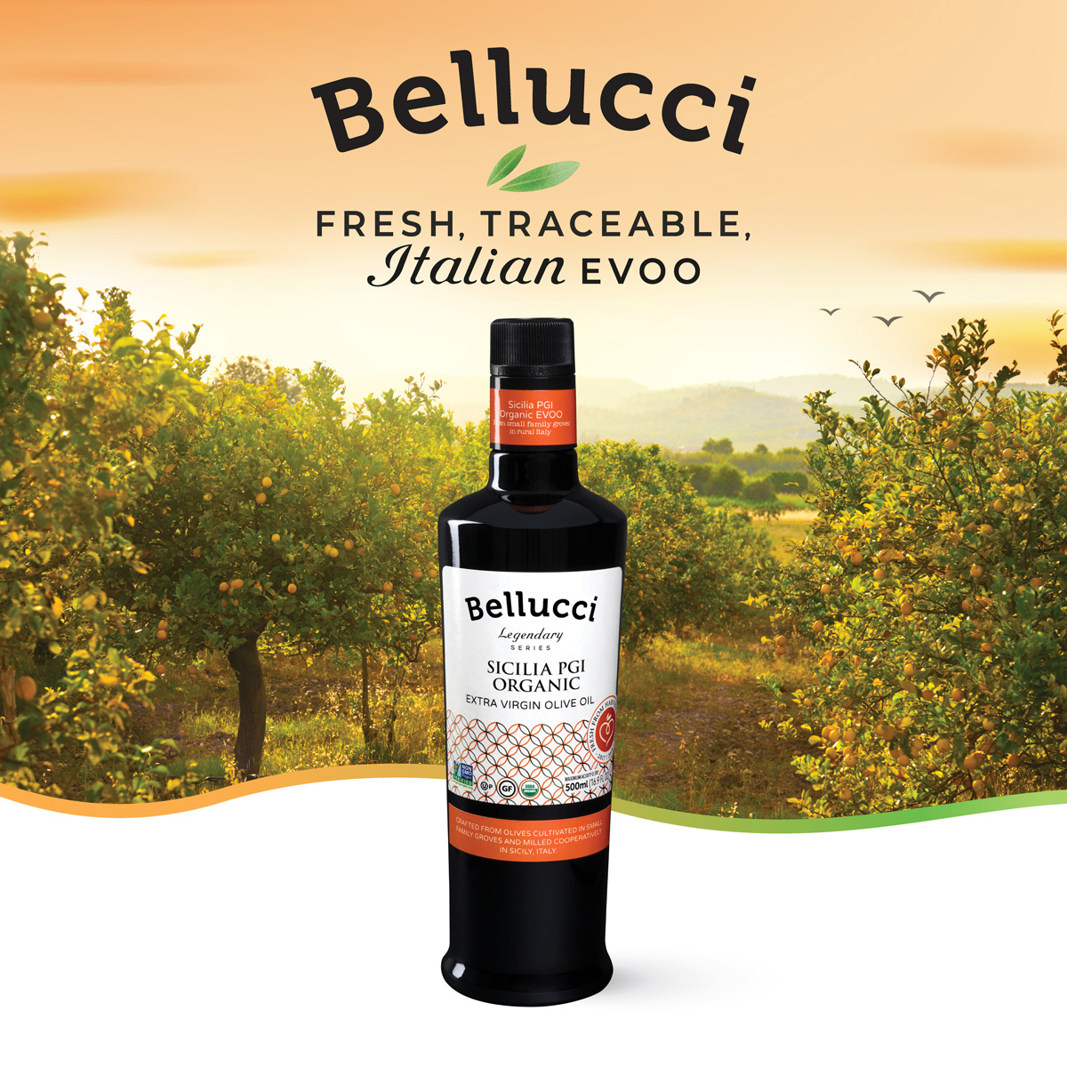 Bellucci Legendary Series – Sicilia PGI Organic EVOO