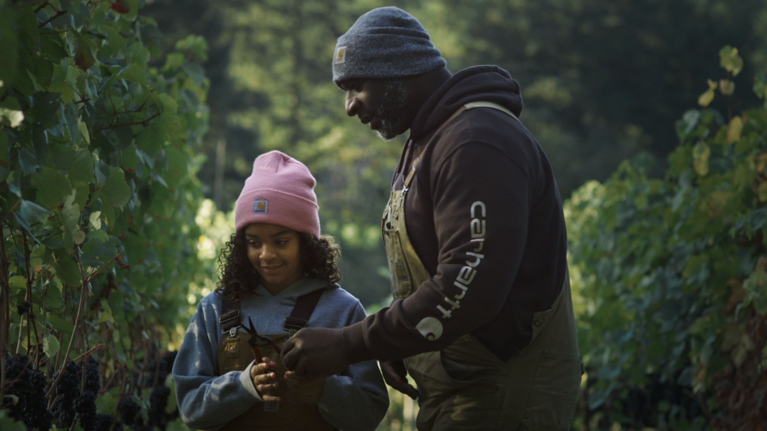 Carhartt Mentor Campaign - Vineyard