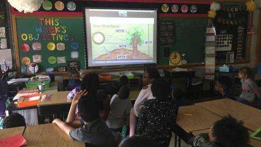 Students Engage in ECHO Program