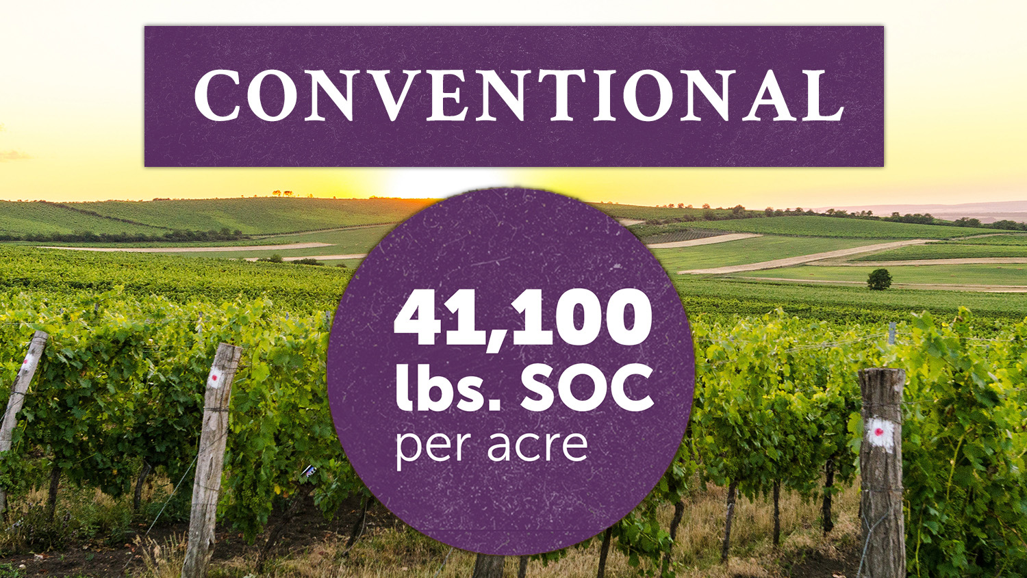 Bonterra's vineyards farmed with Biodynamic and organic practices correlate with greater SOC levels than those found in a similar vineyard site farmed conventionally and shown to hold 41,100 lbs SOC.
