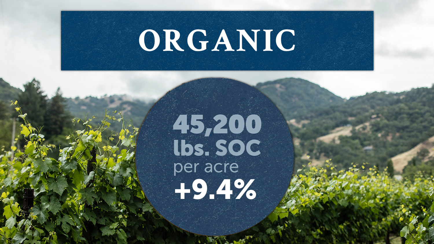 The study analyzed SOC levels in 9 organic vineyards, with organically farmed sites holding +9.4% SOC. More organic carbon in soils means improved biodiversity, drought resistance and erosion prevention.