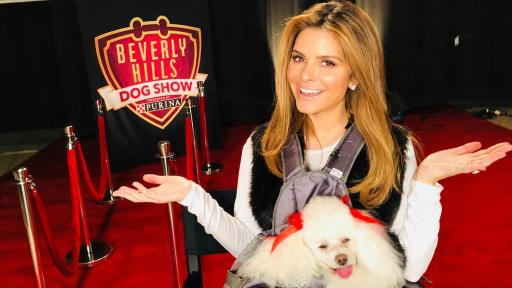 Maria Menounos at the Beverly Hills Dog Show with her dog