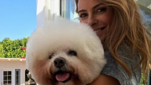 Maria Menounos and her dog Benjamin