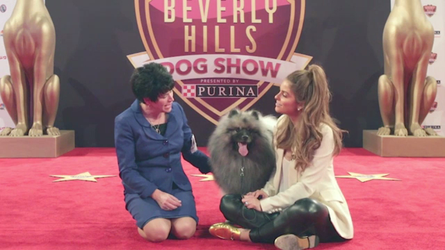 Maria Menounos is teaming up with Purina to invite pet owners to celebrate how our dogs make a positive impact on our lives and showcase why they are the true stars of our families.