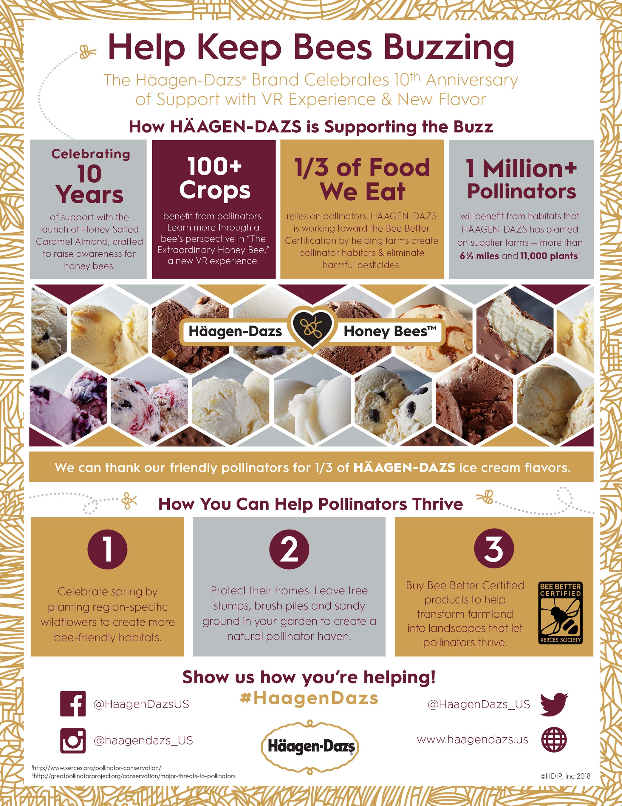How You Can Help Keep Bees Buzzing