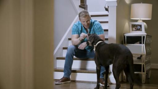 60 second video of TV personality Sean Lowe with his dog