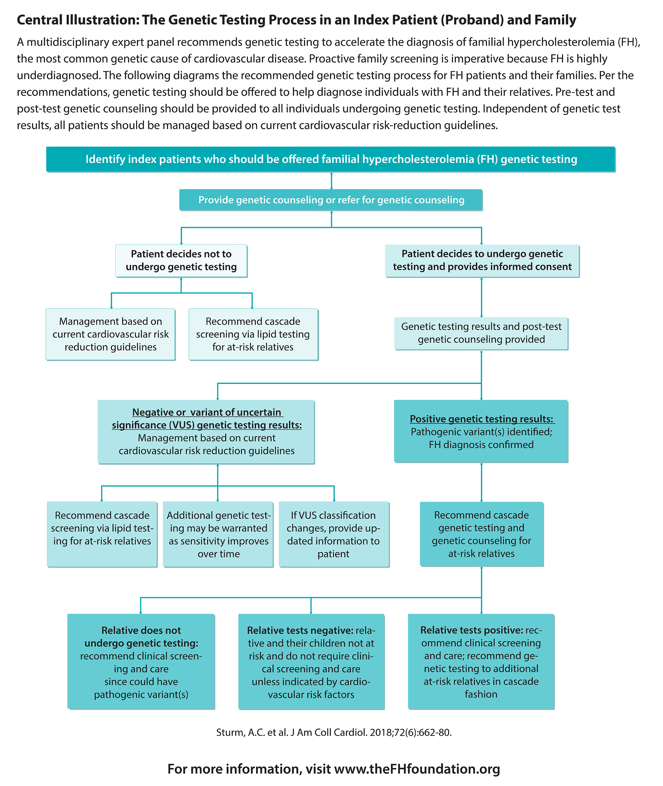 Recommended FH Genetic Testing Process