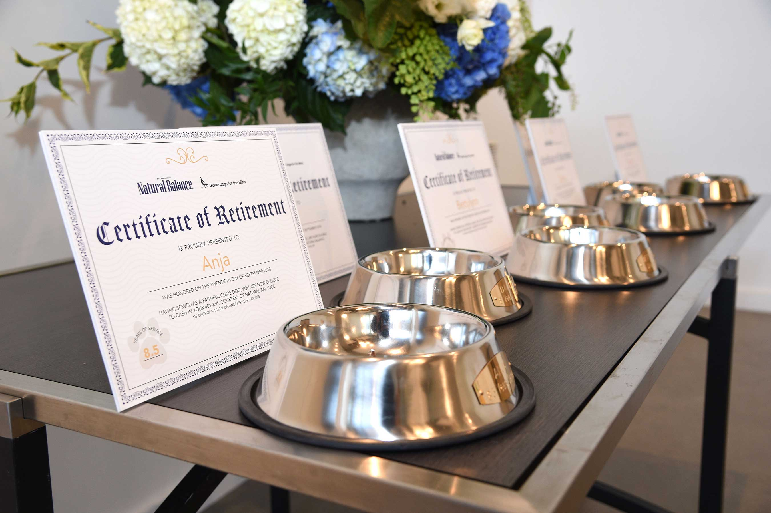 Natural Balance premium pet food brand celebrates the 10-year anniversary of National Guide Dog Month by hosting a Guide Dog Retirement Party at the Kimpton Everly Hotel in Los Angeles.