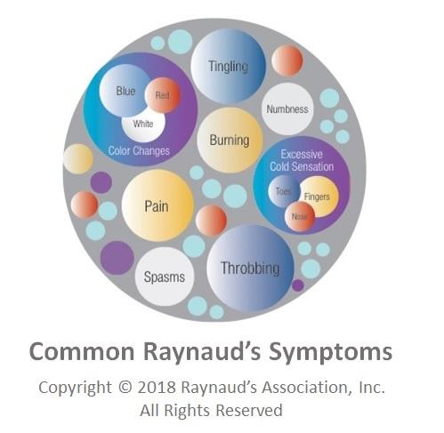 Common Raynaud's Symptoms