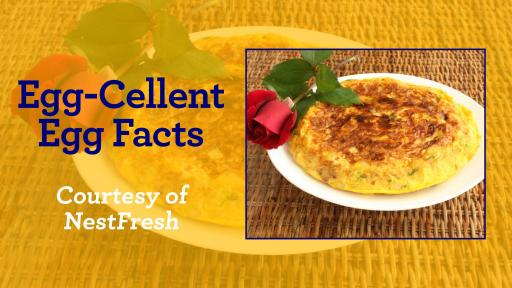 "Banner image that says ""Egg-Cellent Egg Facts"" by and image of a quiche."