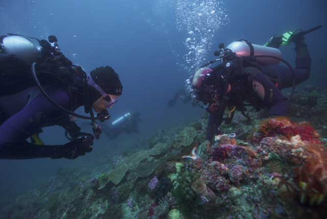 Fisk Johnson, Chairman and CEO of SC Johnson, and M. Sanjayan, CEO of Conservation International, dive among the rich coral reef ecosystems near Bali, Indonesia.