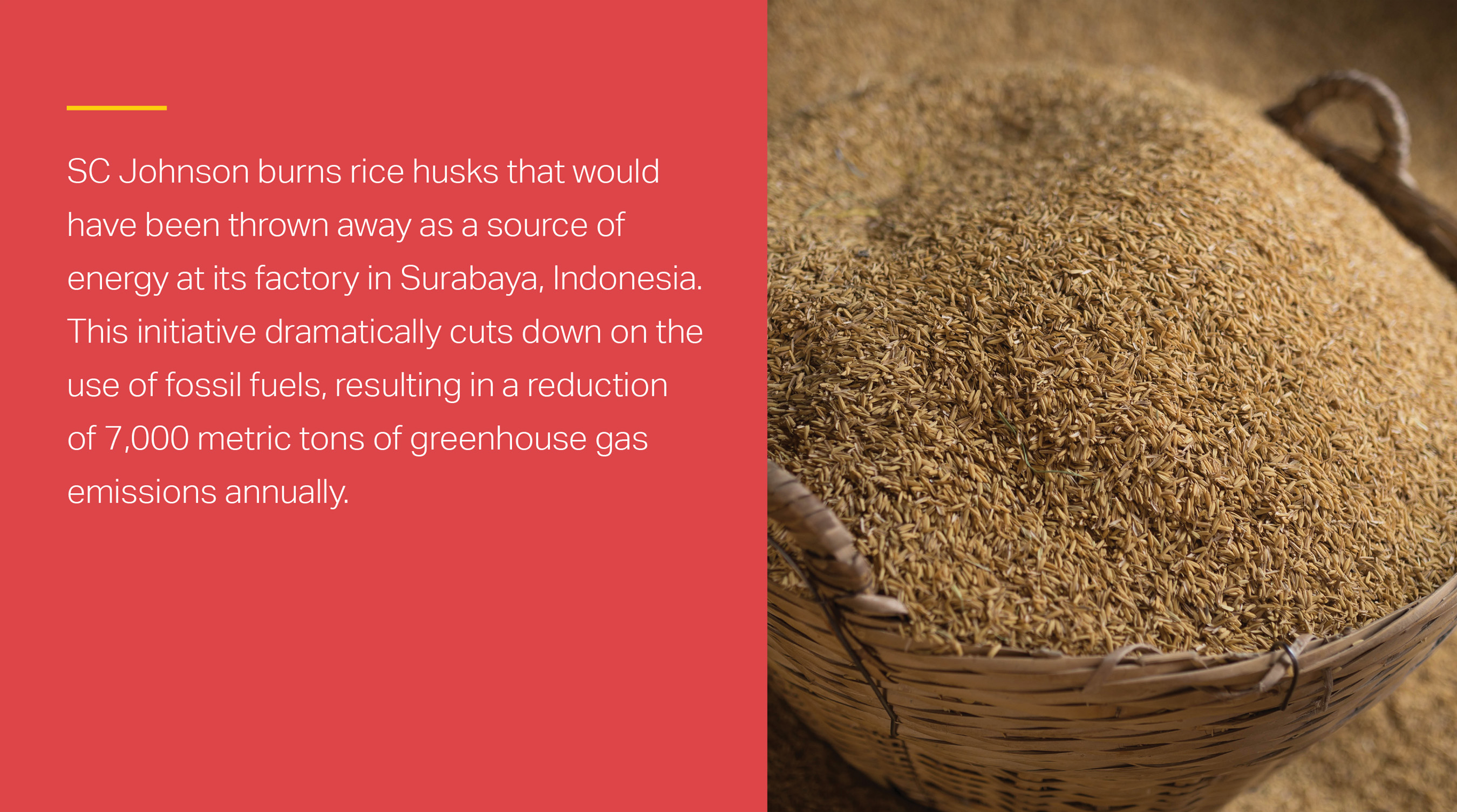 At SC Johnson's factory in Surabaya, Indonesia, husks from rice grains are burned as a source of energy.
