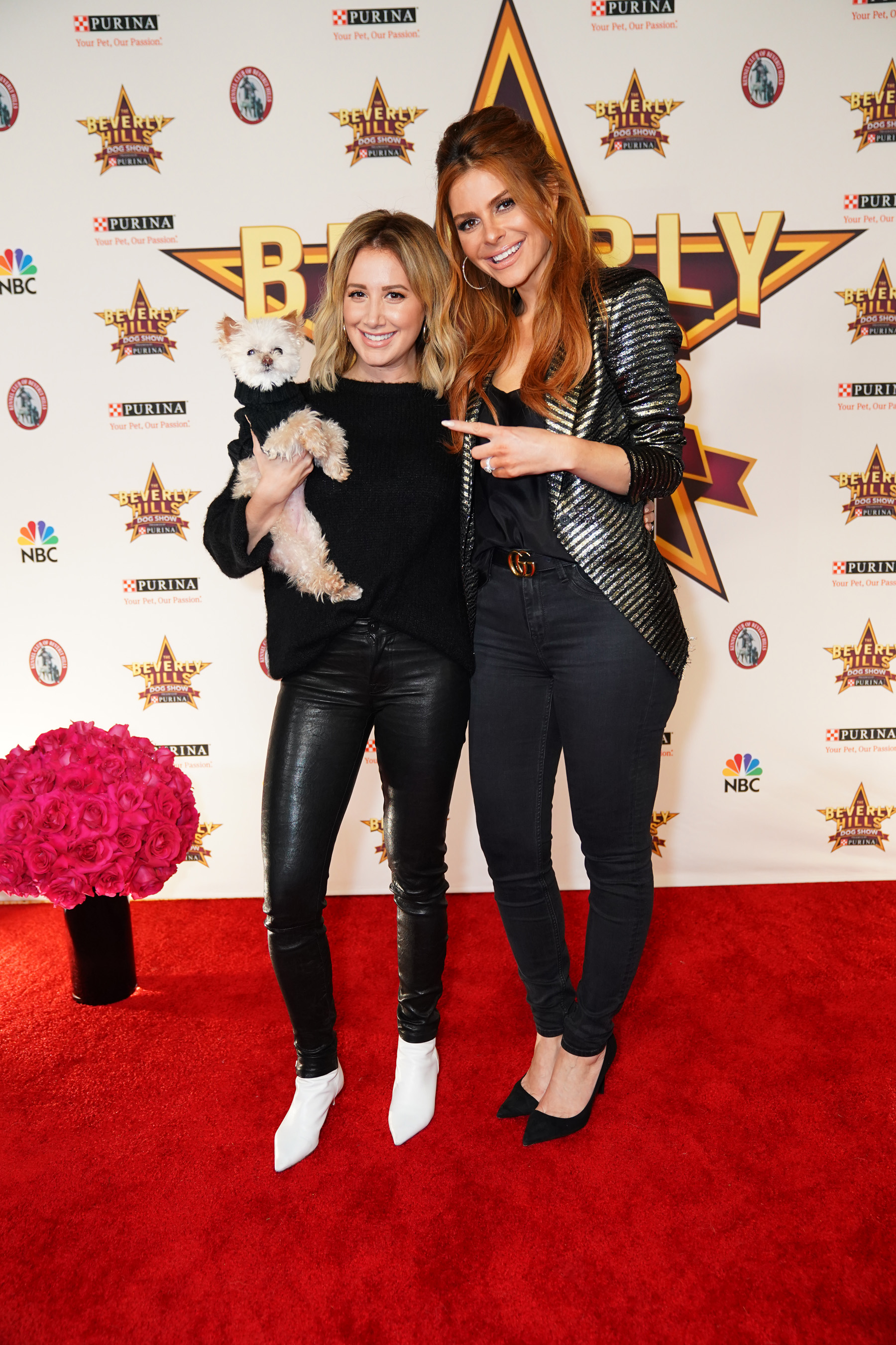 The Beverly Hills Dog Show is a rising family-friendly tradition that brings the stars of both Hollywood and the dog world together for an amazing night while crowning one dog as the 2019 champion.