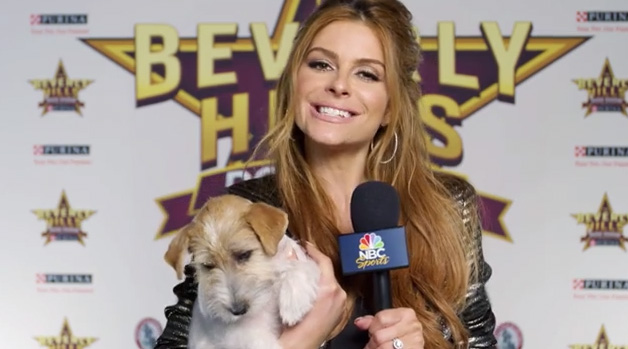 Maria Menounos is teaming up with Purina & NBC as a correspondent for this year's Beverly Hills Dog Show and is inviting pet owners to show why their dogs are stars using the hashtag #EveryDogIsAStar.