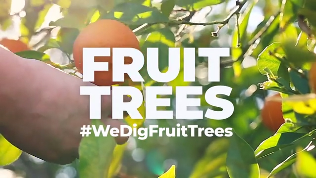 Planting 200,000 fruit trees will generate more than 28 million pieces of fresh fruit and more than 33 million pounds of oxygen, every year, as well as reduce CO2 and air pollution in communities that need it most.