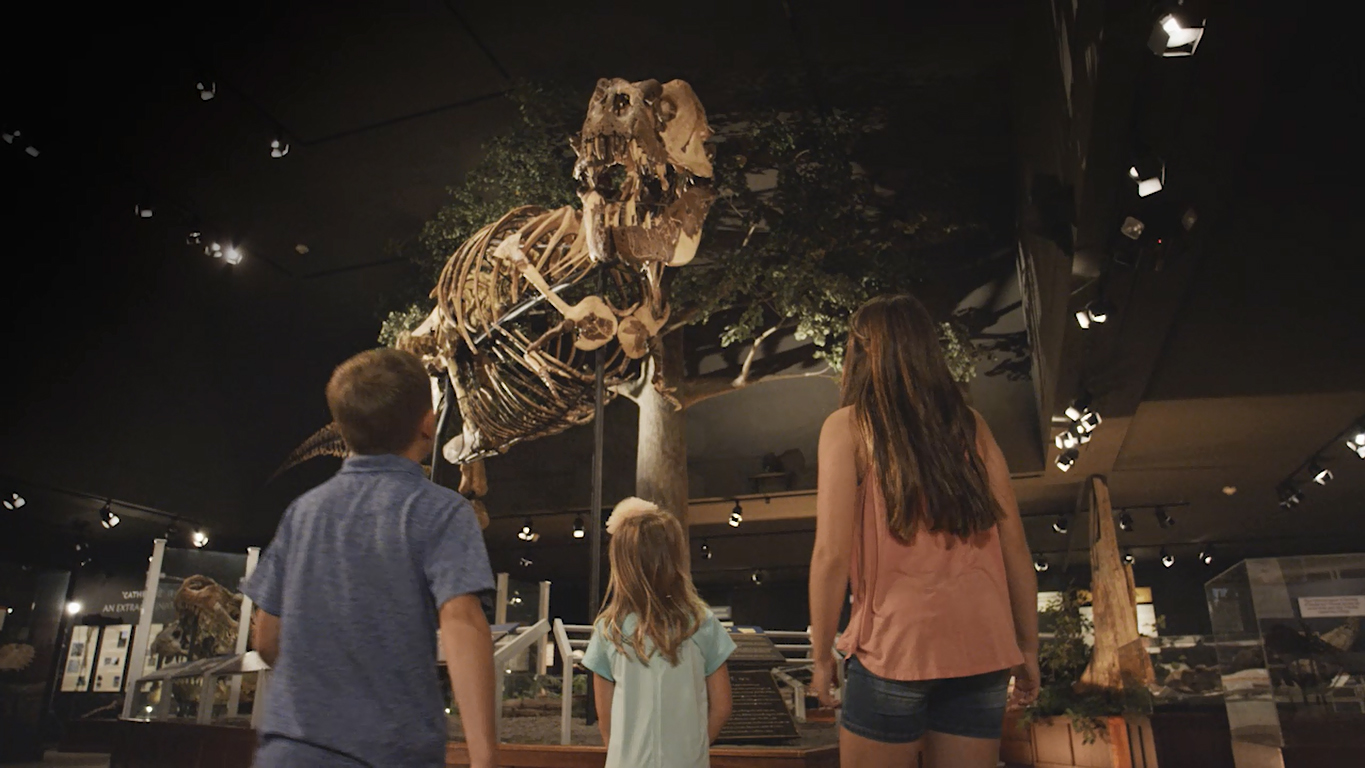 From Big Mike, the Nation's T. rex, to the fossil-rich badlands of Makoshika State Park, the Montana Dinosaur Trail is an adventure for the whole family.