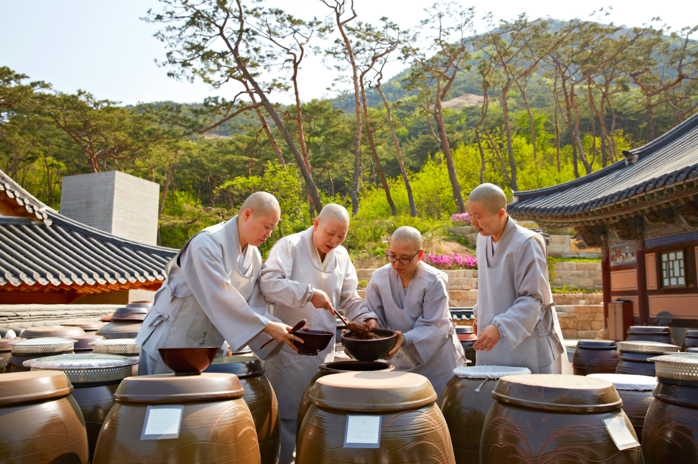 Buddhist monks with Korean Temple Food