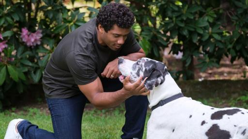 Pro football champion and pet advocate Russell Wilson plays with his dog Naomi while filming the Safer Together™   public service announcement (PSA) with the Banfield Foundation on Wednesday, May 15, 2019, in Redmond, Wash. The PSA will launch nationally ahead of National Domestic Violence Awareness Month to help raise awareness that pets, too, are often victims in homes where domestic violence occurs. Each year, millions of domestic violence victims stay in abusive situations because they fear for the safety of their pet, and with less than 10% of domestic violence shelters welcoming pets, too many lives remain at risk. (Stephen Brashear/AP Images for the Banfield Foundation)
