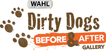 DirtyDogs Gallery logo