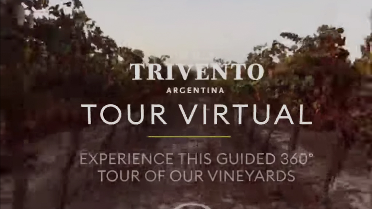 Take Trivento's virtual tour to experience the winery, tasting room, an edgy modern art space and vineyards, from anywhere