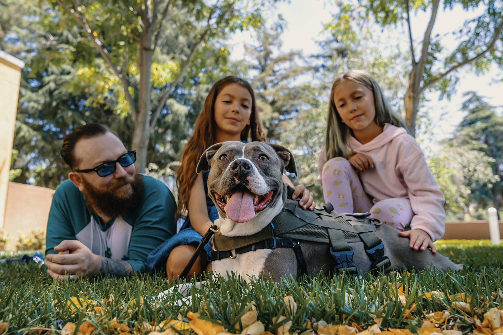 "David, a Marine veteran is seen here with his daughters Sadie and Alathea alongside his service dog, Katie, a Staffordshire terrier mix who was rescued after being hit by a car. David graduated from Tony La Russa's Animal Rescue Foundation's Pets and Vets program, which is partnering with Purina Dog Chow for its second annual ""Service Dog Salute"" campaign."