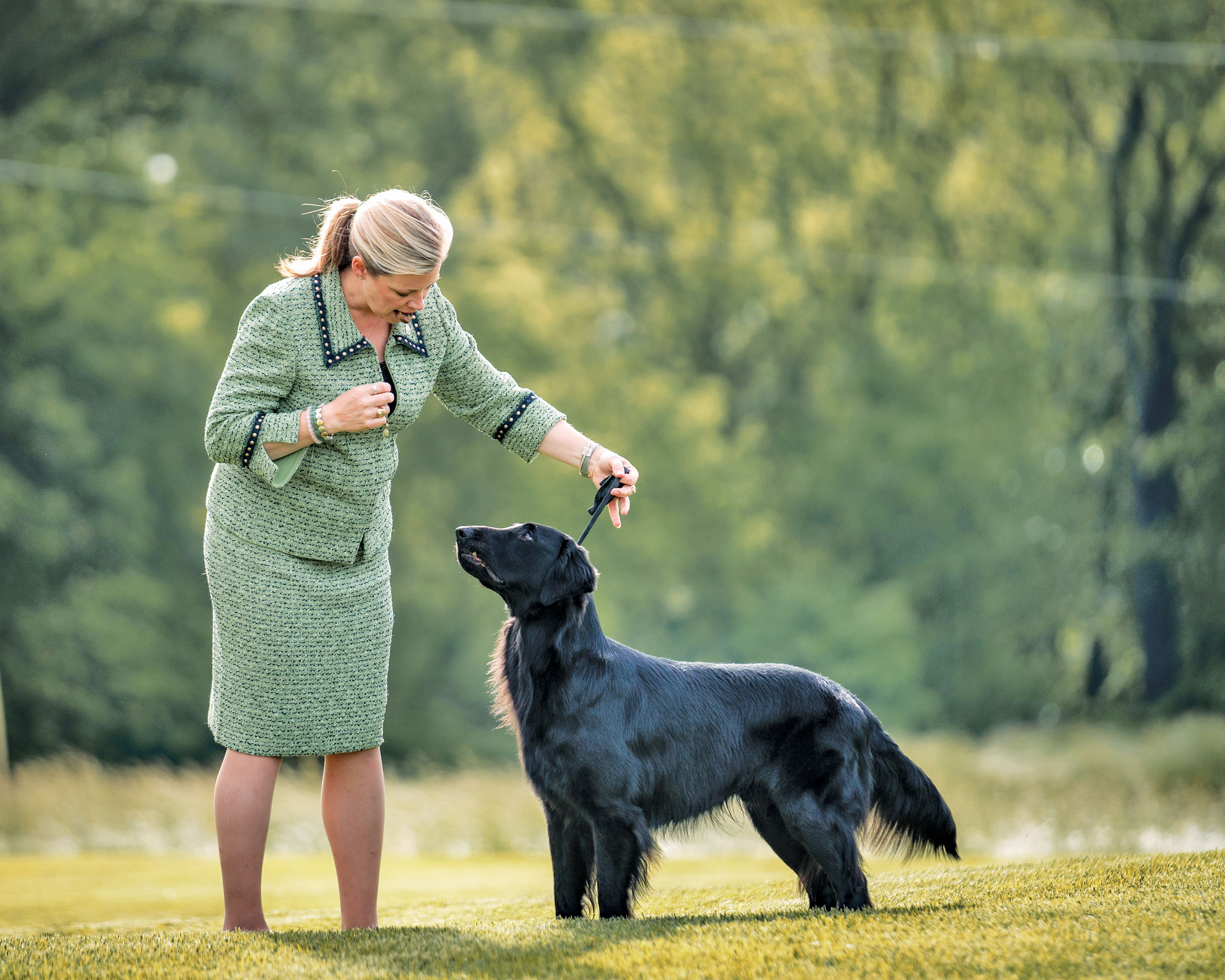 "Professional dog handler Angela Lloyd, who handled the 2011 Westminster Best in Show winner, says Purina® Pro Plan® Veterinary Supplements Calming Care helped ""Cole,"" a Flat-Coated Retriever, begin relaxing at her show kennel."