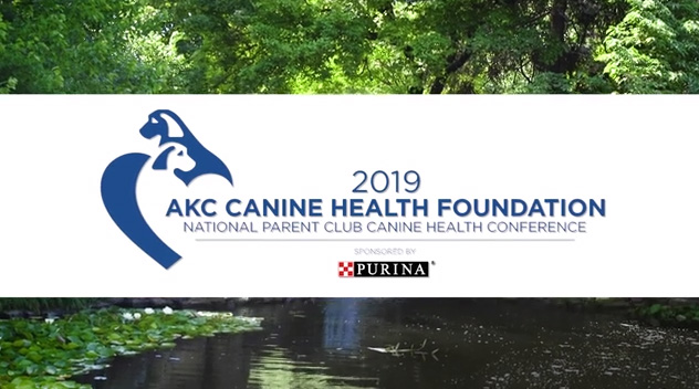 Purina & AKC Canine Health Foundation Partner to Benefit Dogs Everywhere
