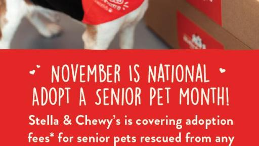 Stella & Chewy's is covering adoption fees for senior pets rescued from any shelter in the USA!