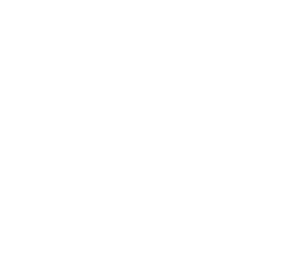 Bloomeffects