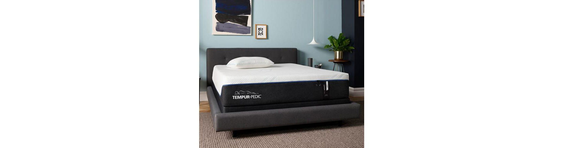 Tempur-Pedic bed