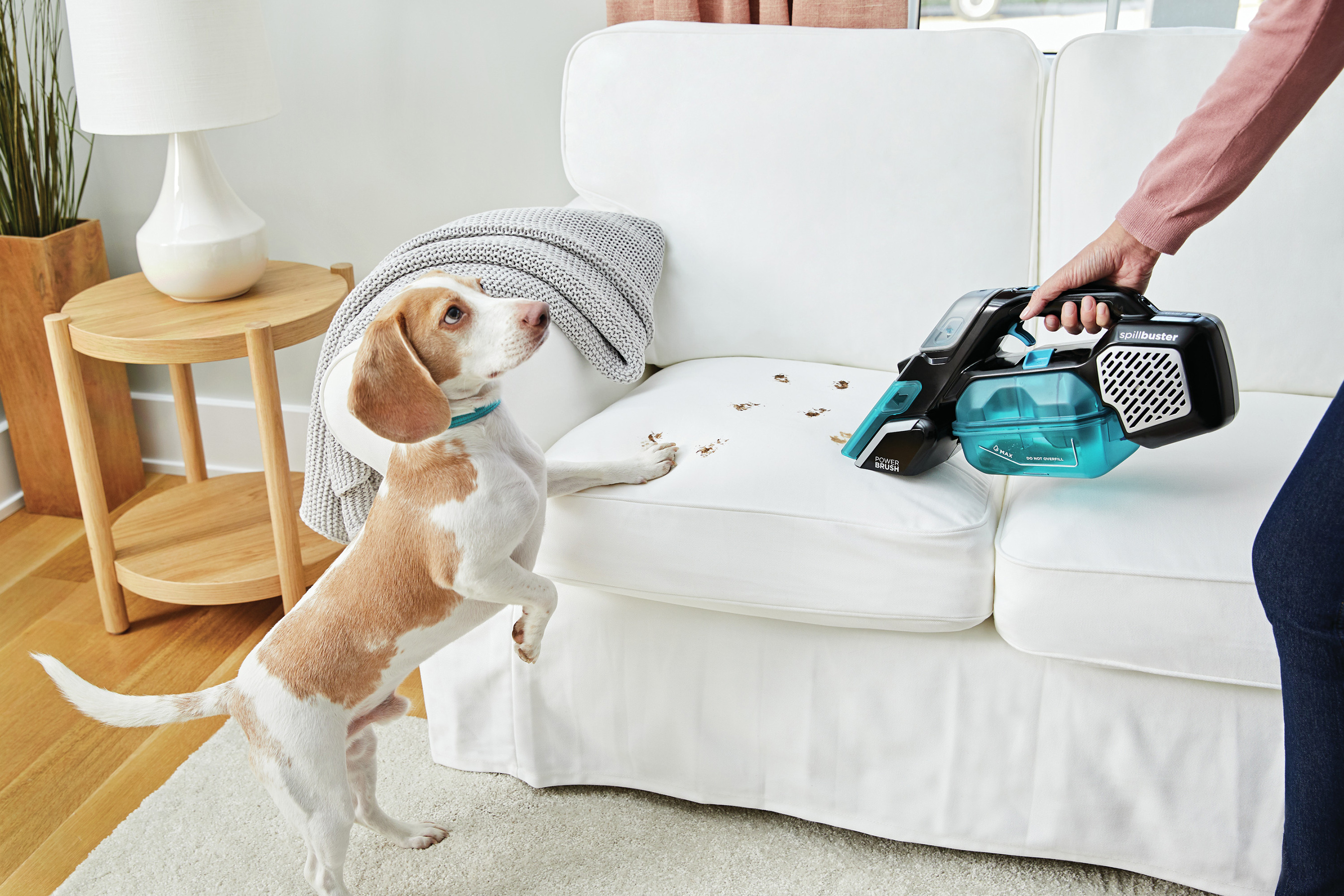 Cleaning convenience for pet messes