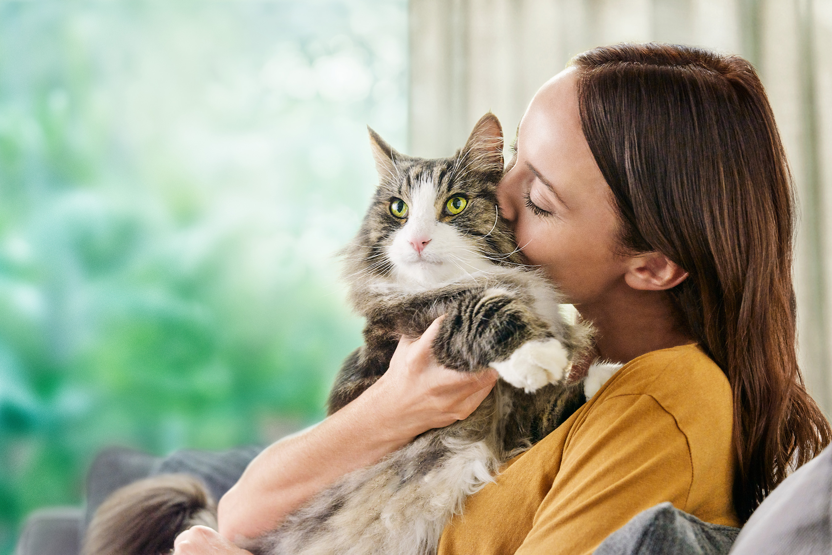 Backed by more than a decade of research, Pro Plan LiveClear is shown to safely and effectively reduce allergens in cat hair and dander in as little as three weeks of daily feeding.
