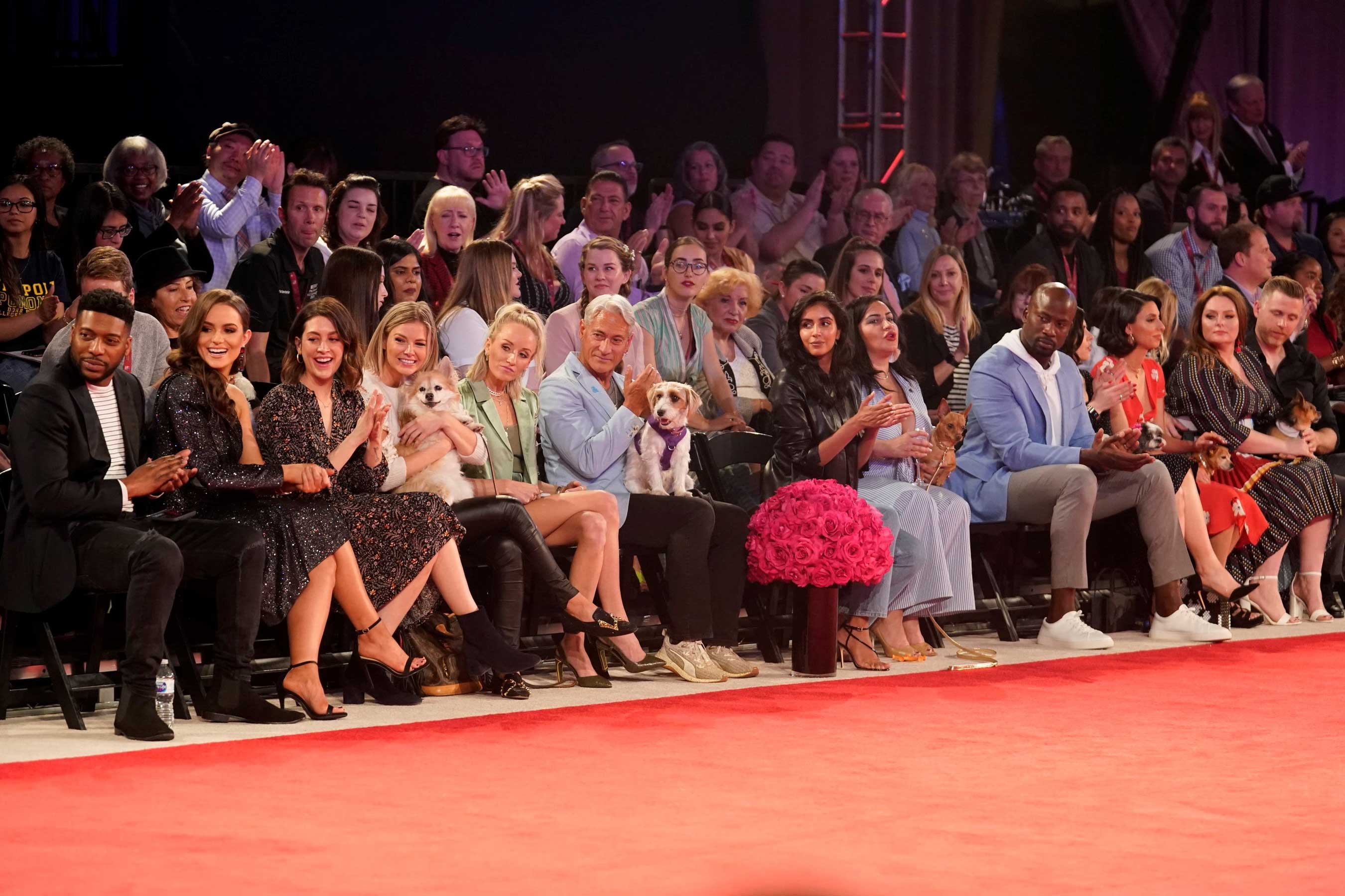 Celebs like Doug the Pug, Olivia Culpo, Nastia Liukin, Greg Louganis, Brian Baumgartner, Akbar Gbajabiamila and Jade Catta Preta will be ring side to cheer on their favorite breeds as the group winners walk the red-carpet runway to vie for Best in Show at the fourth-annual Beverly Hills Dog Show Presented by Purina. The show was recorded in February 2020 before social distancing measures were in place.