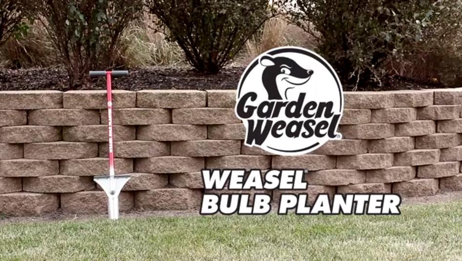 Weasel Bulb Planter
