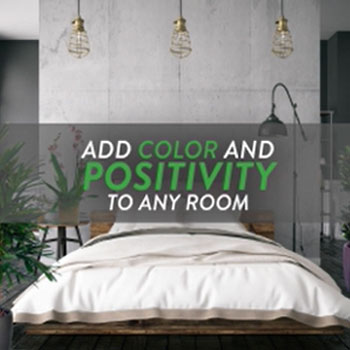 Add color and positivity to any room with Aloha at Home.