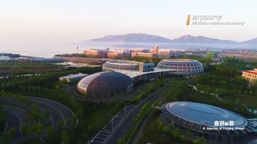 Play Video: This is Shandong: A Journey of Forging Ahead